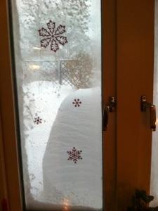 Vinter utanför vårt köksfönster
